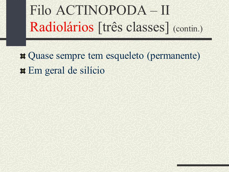 Filo ACTINOPODA – II Radiolários [três classes] (contin.)